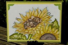 Cards - House Mouse / by Michele Sarra Scott