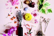 Flowerdelight