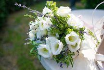 Herb Theme Wedding In Rhodes