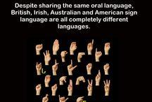 ASL,   Sign Language