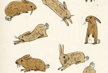 ILLU animaux lapins