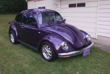 The bug project