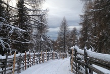 What to see in Val di Non / Castles, lakes, amazing views... all you can see in our beautiful valley