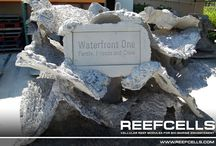 REEF CELLS Name Plaques / REEF CELLS Name Plaques. Please credit www.reefcells.com when using our photos.