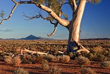Central Aust Landscape Photos