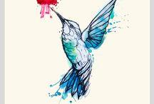 zvířata, ptáci