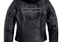 Harley Likes