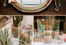 Pink and Peachy Tablesetting