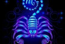 I'am Scorpion