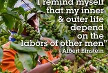 Fairtrade//Quotes