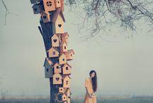 photography : art