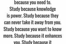 fall in love with study.