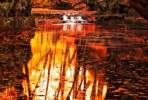 FALL / A linda estação do recolhimento. Da busca e conhecimento interior, que a natureza nos mostra, para depois renascermos com a alma renovada.