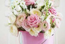 Flowers / by Rue du Framboisier