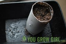 Gardening / by Loyola Sustainability