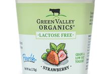 Low FODMAP Dairy & Non-Dairy Products - 2