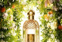 Letní vůně / Užijte si léto se svěží lehkou vůni! Nejlepší parfémy na léto najdete v naši letní nabídce na http://www.cosmo.cz/letni-vune.html
