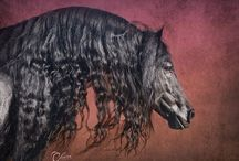 Friesian in the World. ~ ♥ / Watch more friesian horse: www.facebook.com/friesian.horses
