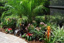 Landscaping & Backyard Deck