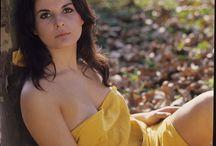 Simonetta Stefanelli /  Simonetta Stefanelli