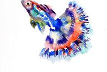 Fische/Meer
