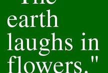 Inspiriational Quotes