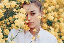Annabelle floral