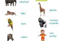 Homeschooling | Field Trip Fun / Learn can be fun!