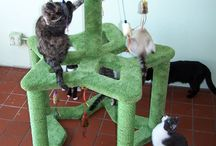 Themed Cat Playsets