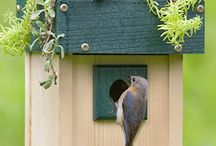 Bird house ideaa