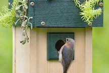 Birdhouse/casitas para pájaros
