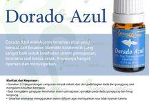 Young Living Dorado Azul Essential Oils