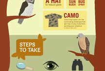 Birdwatching in South Dakota / Another great way to get your tail on the trail is to take up Birdwatching as a hobby! It doesn't require a whole lot of physical commitment and can be very enjoyable and therapeutic! Get out there SD! HealthySD.gov