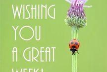 Weekdays & Weekends / Wishing you a good week or weekend. Mo--till--Su