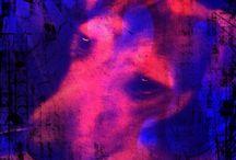 Doggy pop art