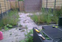 Dan@Work Tuinprojecten / Mijn Tuinprojecten