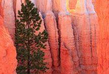 National Parks Road Trip