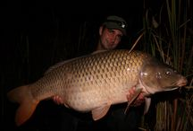 Team friends and carp / All the big ones caught by friends of mine.