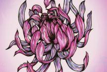 Цветы-цветочные - хризантемы / Категория цветы