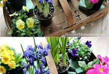 květinové variace