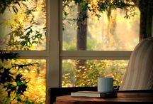 Bom Dia!!! / Um Bom Dia inicia com um belo café da manhã e se for servido na cama...ainda melhor!!