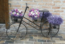 Bicis <3 / De mis mayores amores, la bicicleta en todos sus estilos.