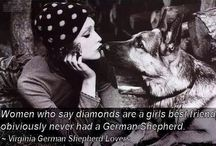 German Shepherd life