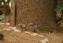 fairy/gnome garden