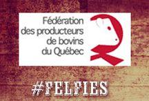 Federation des producteurs de bovins du Quebec / Federation des producteurs de bovins du Quebec