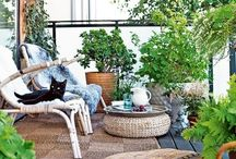 plants & outdoor decor