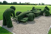 Topiaries / by Heather Lewis