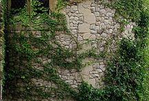 w&d / Gustave Flaubert (Madame Bovary) La fenêtre, en province, remplace le théâtre et les promenades