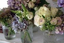 Flowers / by Windmill Farm