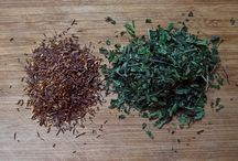 Herbs - How To